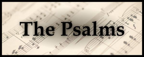 Terry Irwin - The Saving King - Psalm 18 Image