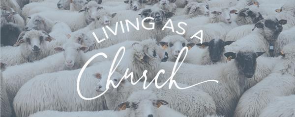 Stephen Martin - Living As A Church - Church Discipline Image